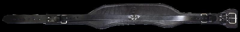 Scaffold Belt